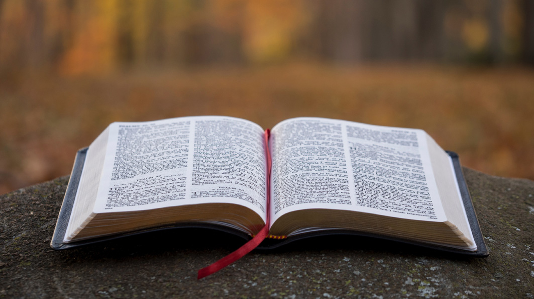 Focus's Bring Your Bible to School Day Breaks Records and Inspires Students Across the Country