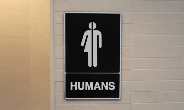 The Bostock Slippery Slope: Girls Who Think They're Boys Must Be Allowed to Use High School Boys' Restroom, Appeals Court Rules
